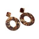 Fashion new acetate plate geometric earrings for women hotsaling wholesale NHRN260348