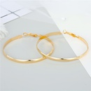 Hot selling fashion exaggerated personality big earrings wholesale NHGO260804
