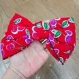 NHUX1140477-Red-cherry-hairpin