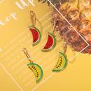 Korea creative  watermelon series drip earrings NHJQ261728