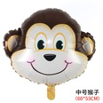NHAH1147275-monkey