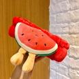 NHNA1151729-85-watermelon