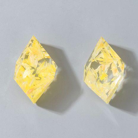 S925 Pendientes de aleación pequeños y dulces cuadrados tridimensionales facetados de aguja de plata NHGY264594's discount tags