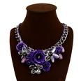 NHVA1094034-purple