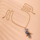Personality owl pendant   long  necklace wholesale NHAI254556