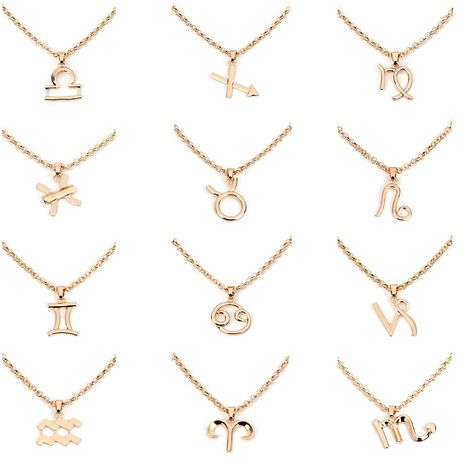 Hot-selling twelve constellation necklaces wholesale NHRN254706's discount tags