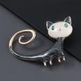 NHJE1391689-Black-cat