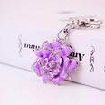 NHAK1405598-purple-individual-package