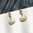 NHAI1406153-Shell-with-gold-edging