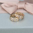 inlaid zirconium bar fashion earrings NHBP310481