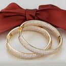 simple  goldplated zircon earrings NHBP310487