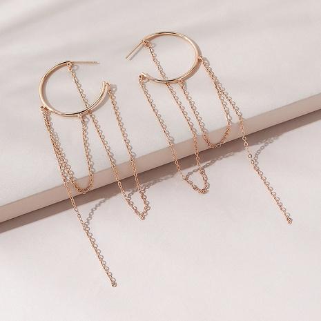 simple wild fashion big long tassel earrings NHPS311453's discount tags