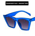 NHKD1442216-Metal-hinge-Transparent-blue-double-gray