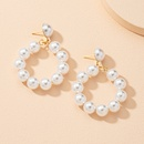 fashion circle pearl earrings  NHAI303549