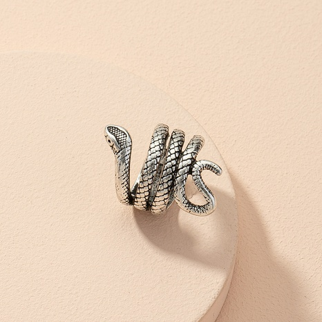 Simple fashion exaggerated zodiac snake ring  NHAI303975's discount tags