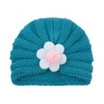 NHWO2172784-Hole-blue-(big-flower)