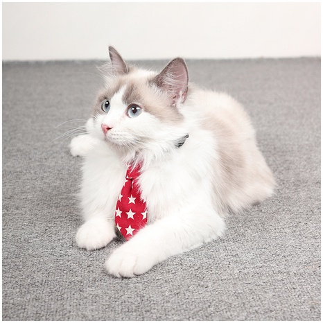 new pet collar bow tie cats and dogs universal fashion accessories small accessories adjustable cute pet tie NHPSM438169's discount tags