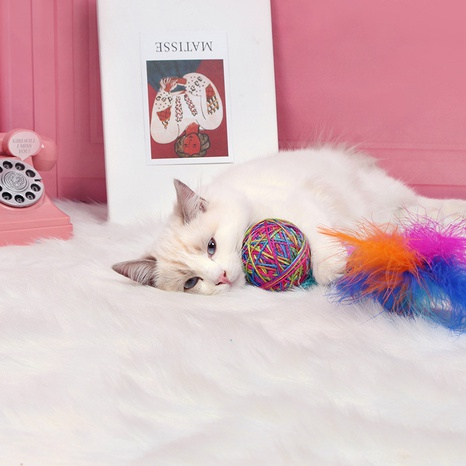 Cat toy pet toy ball funny cat fun yarn ball with feather pet supplies wholesale cross-border NHPSM438157's discount tags