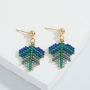 Spain tropical rainforest fruit earrings  NHJQ313649