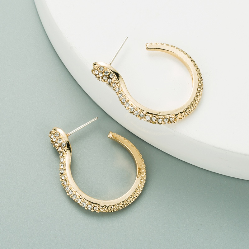 simple exaggerated snake-shaped earrings NHLN315405