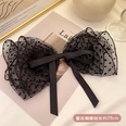 NHCQ1453050-2Large-lace-hairpin-black