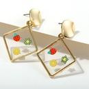creative retro fruit geometric earrings NHYI316361