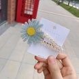 NHFS1455664-Sky-blue-flower-BB-clip