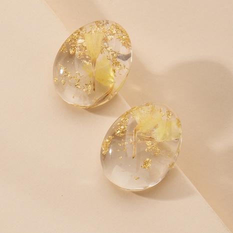 boucles d'oreilles transparentes mode fleur séchée NHAI315382's discount tags