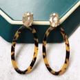 NHOM1489156-Oval-brown-earrings-3.78.4cm
