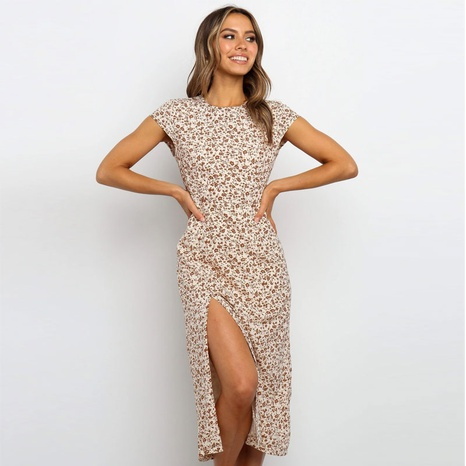 Summer fashion round neck print dress NHJC324239's discount tags