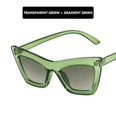NHKD1373278-As-shown-Transparent-green-frame-double-green
