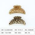 NHDM1508478-Shades-of-leopard-print