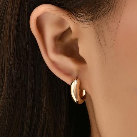 Mode einfache Legierung Kreis Ohrringe NHAJ329100's discount tags