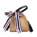 Fashion straw silk scarf shoulder messenger bag NHRU328791