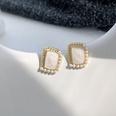 NHWB1518248-White-~Pearl-Earrings