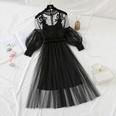 NHKO1551310-black