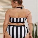 Contrast color striped print high waist bikini  NHHL335721
