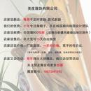 Korean solid color curved brim velcro caps  NHAMD335899