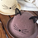 Korean lace cat ears sunshade sunscreen straw hat NHANS336054