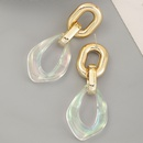 fashion transparent specialshaped resin earrings NHNZ336393