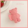 NHCQ1555825-Pink-bear
