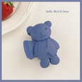 NHCQ1555830-Blue-bear