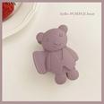 NHCQ1555831-Purple-bear