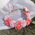 NHSM1556277-Orb-flower-pink