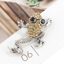 Fashion Halloween animal frog brooch NHAYN336549