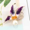 NHAYN1557135-purple