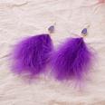 NHAYN1557456-purple