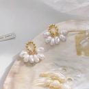 Korean pearl dropshaped earrings  NHWB338050