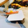 NHAMD1566299-Chrysanthemum-duckbill-clip