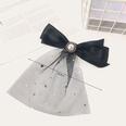 NHUX1568833-Long-mesh-pearl-10-cm-spring-clip